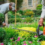 Considering A Garden Makeover? Here Are Some Helpful Tips